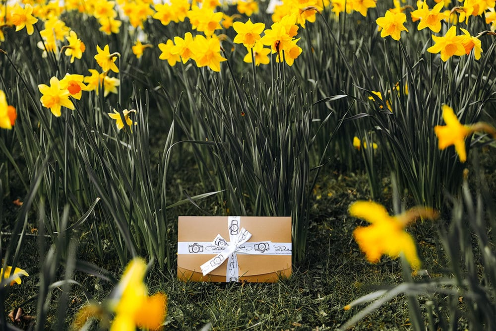 mothers day photoshoot gift voucher