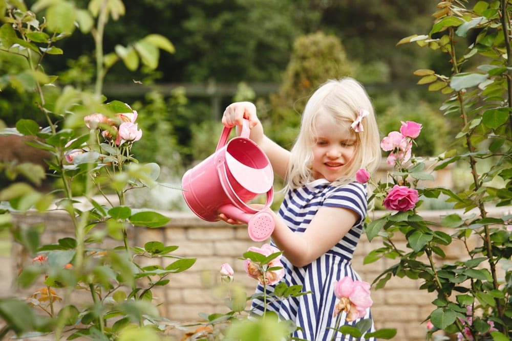 Watering the garden with a pink watering can