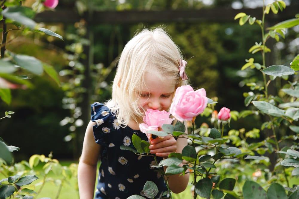 Little girl smelling roses