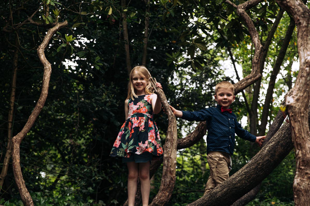 Kids in trees