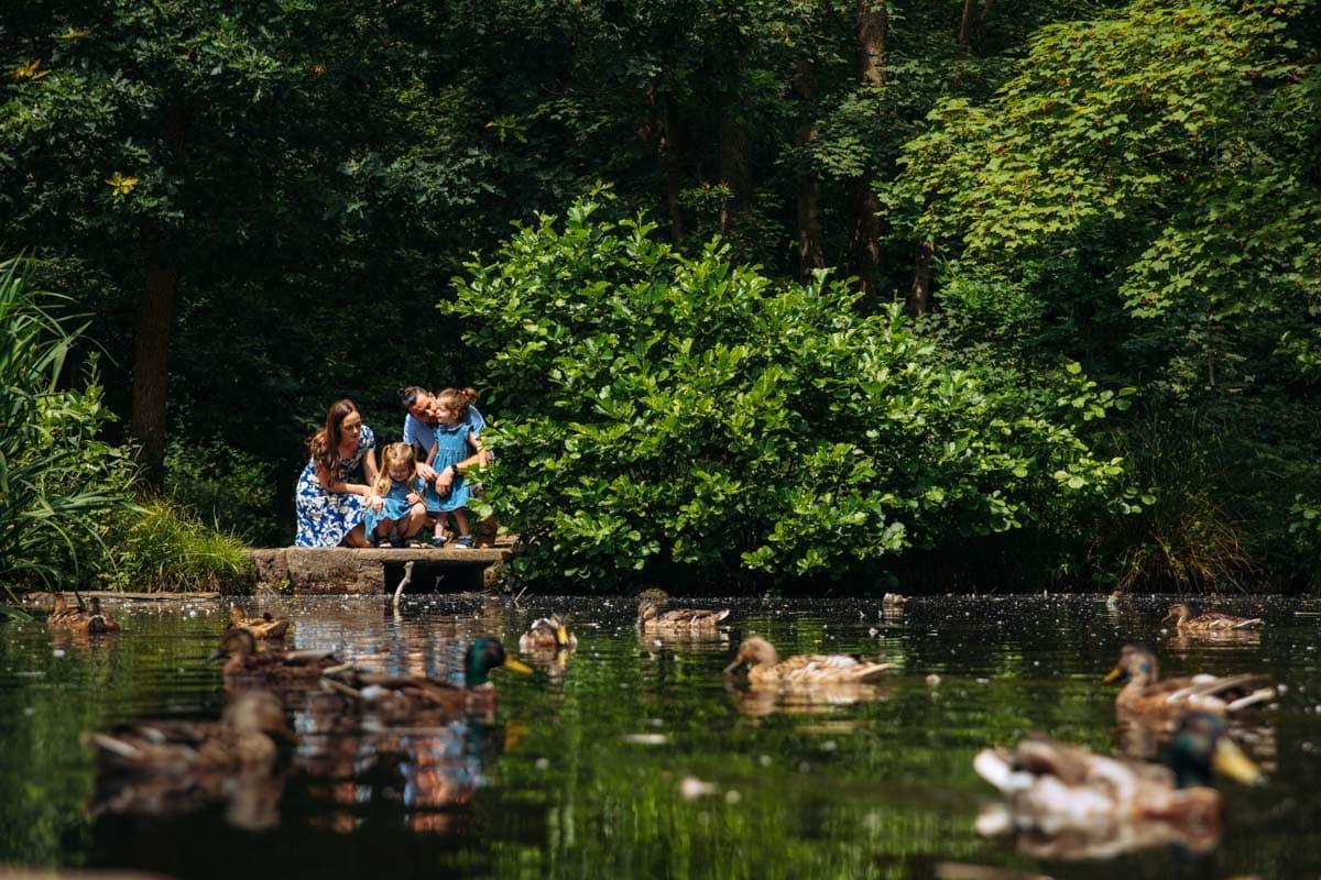 duck pond at bramhall park